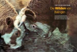 Magazin Natur, Juli 2000